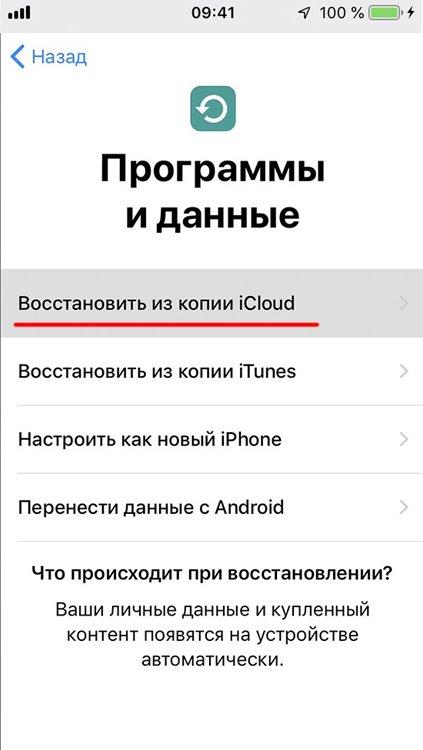 Окно «Программы и данные» на iPhone