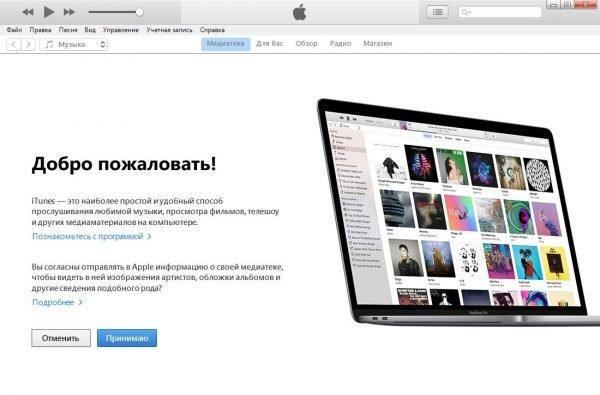 Стартовое окно программы iTunes