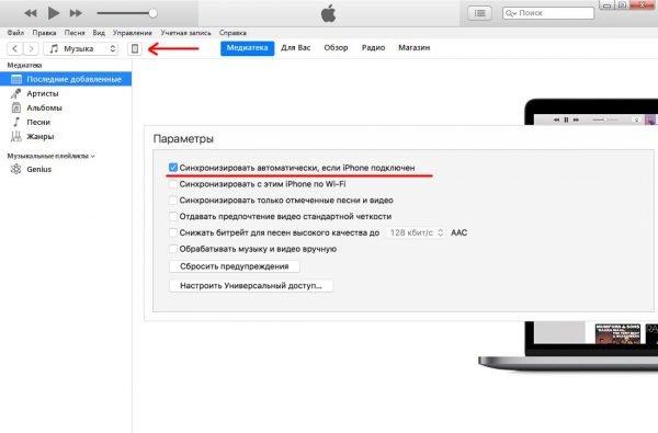 Основное окно iTunes