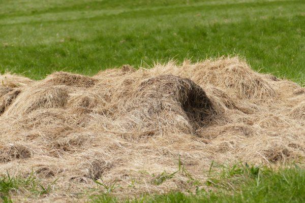 Копна сена на газоне