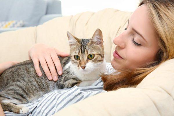 Кот на девушке