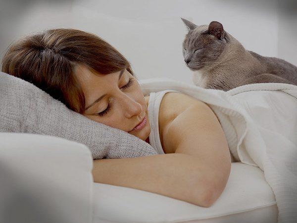 Кот на спине у девушки