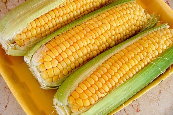 Початки кукурузы с листьями в магазинной упаковке на столе
