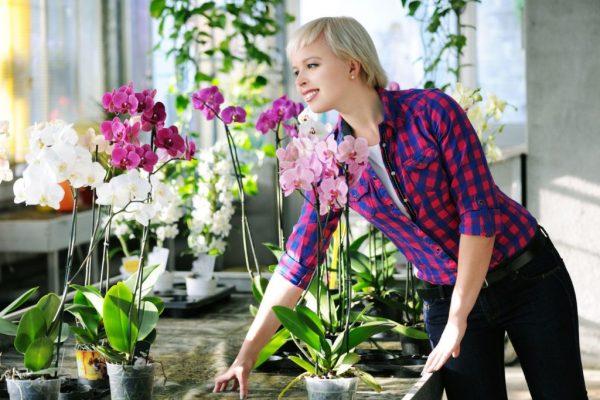 Девушка и орхидеи
