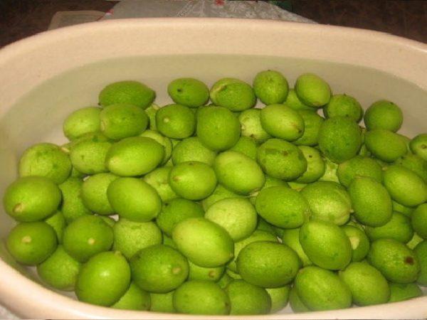 Зелёные грецкие орехи в воде