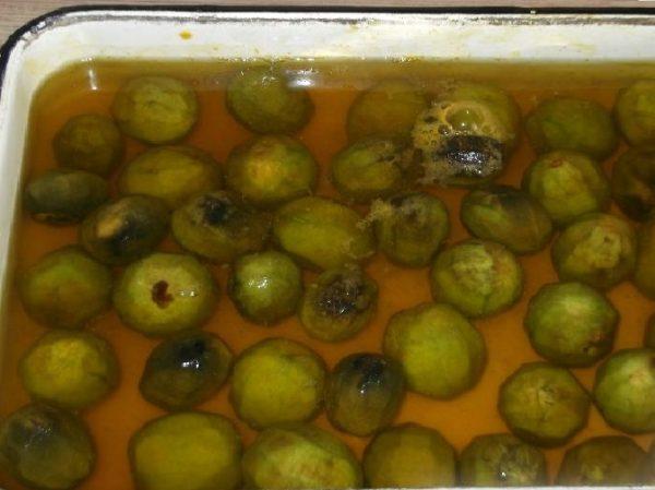 Грецкие орехи в воде