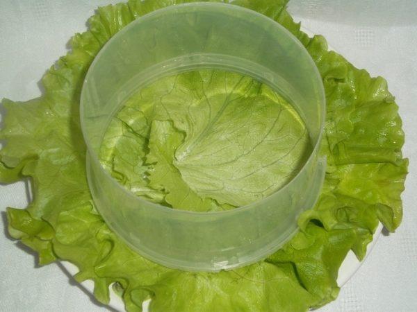 Пластмассовое формовочное кольцо на тарелке, выстеленной салатными листьями