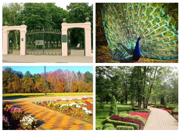 Ботанический сад имени Косенко