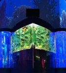 Вертикальные аквариумы в Ocean Park