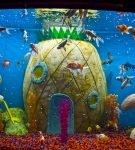 Аквариум с дизайном «Спанч Боб» в Ocean Park