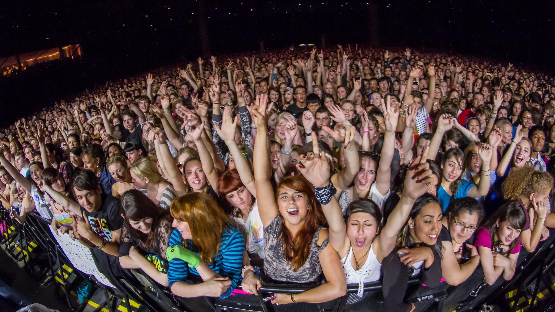 египет зрители на концерте картинки большинство комментаторов
