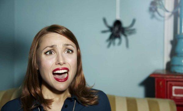 Женщина испугалась паука