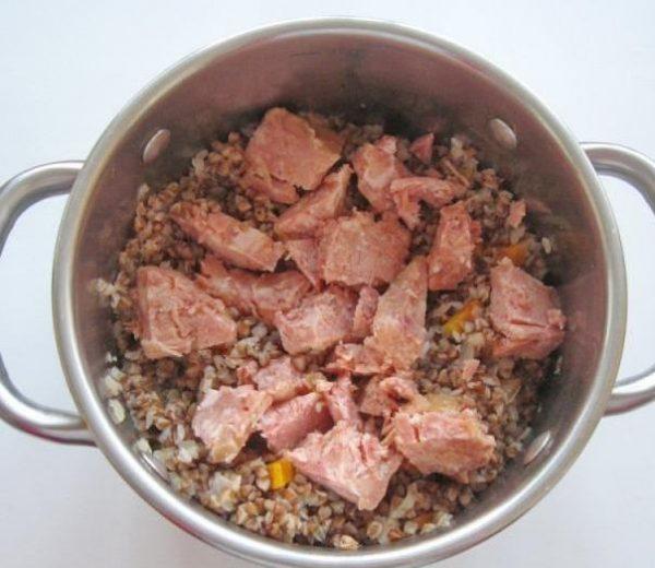 Кусочки свиной тушёнки в кастрюле с гречневой кашей