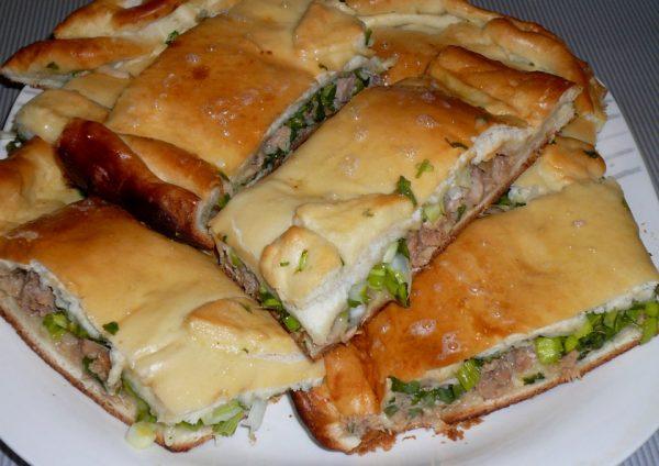 Нарезанный порционными кусочками дрожжевой пирог с мясом и зеленью на белой тарелке