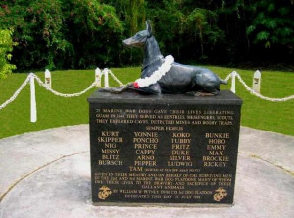 Памятник доберманам, служившим в морской пехоте США