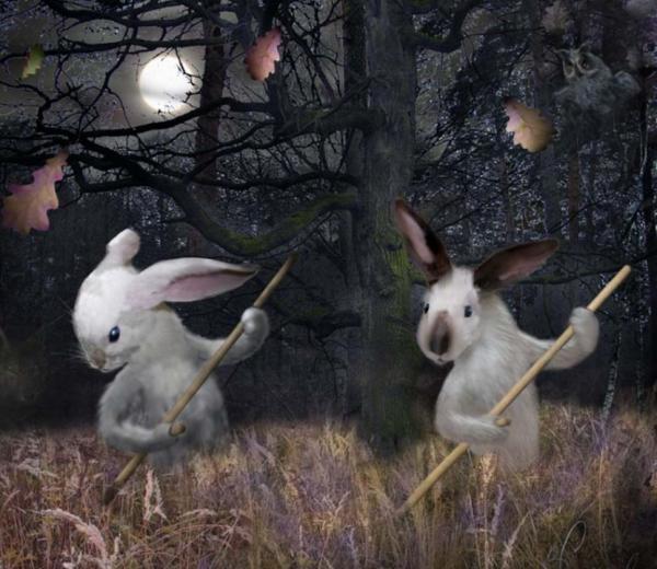 Зайцы косят траву